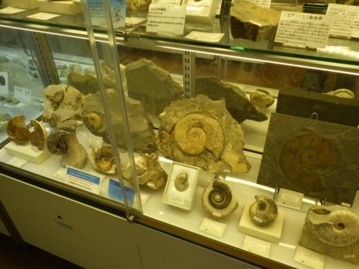 国立博物館 (5)
