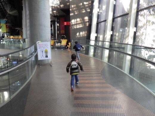 茨城県自然博物館 (6)