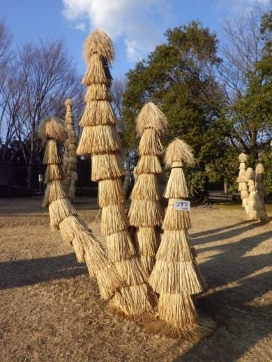 茨城県自然博物館 (39)