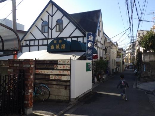金魚坂へ (6)