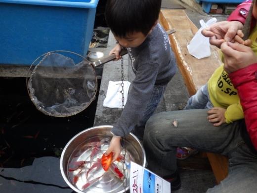 金魚坂へ (31)