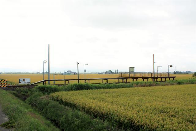 札沼線79