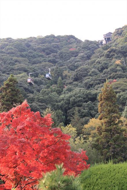 錦川ロープウェー1