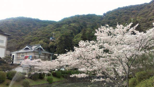 錦川ロープウェー2