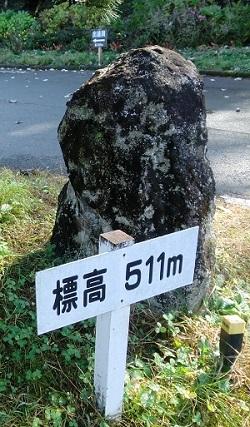 2016_11_20_1_3.jpg