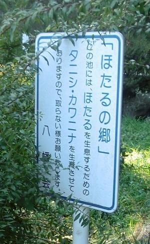 2016_11_20_2_06.jpg