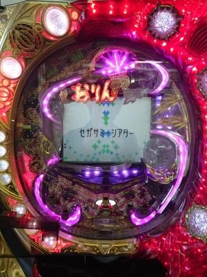DSC_0413_R.jpg