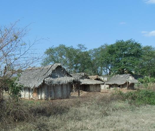 マダガスカル田舎風景2