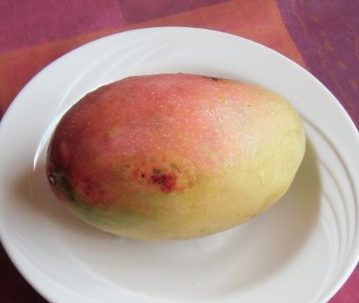今が旬アップルマンゴウ