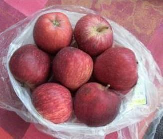 「うんせい」に良いリンゴ