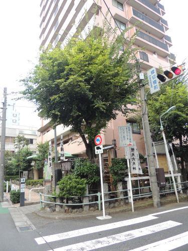 170103itabashi42.jpg