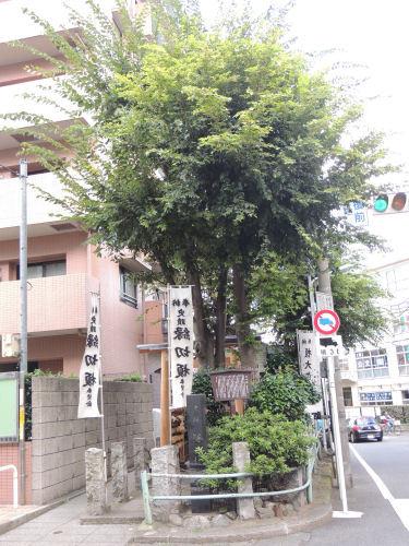 170103itabashi43.jpg