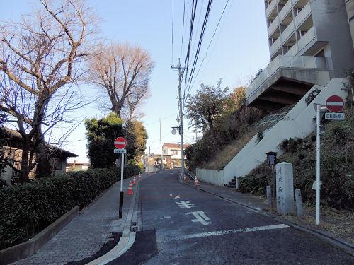 170110itabashi19.jpg