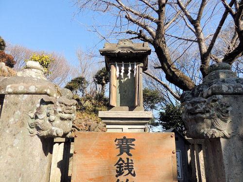 170122tagofuji10.jpg