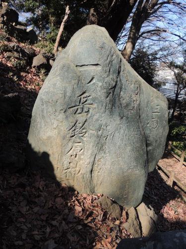 170122tagofuji26.jpg