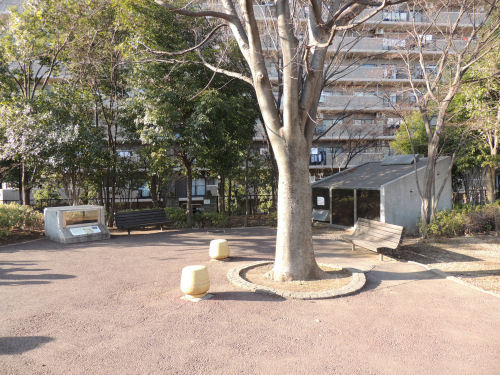 170129higashi01.jpg