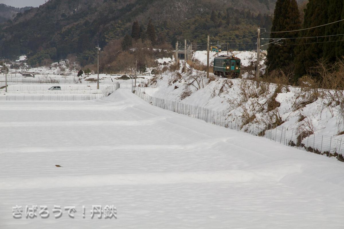 雪景色の中のMF