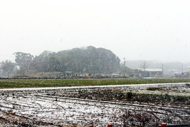 雪の田園2
