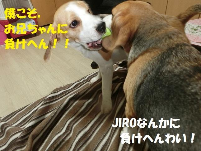 くCIMG7180