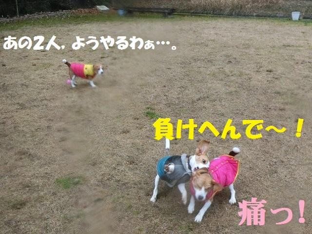 くCIMG7812