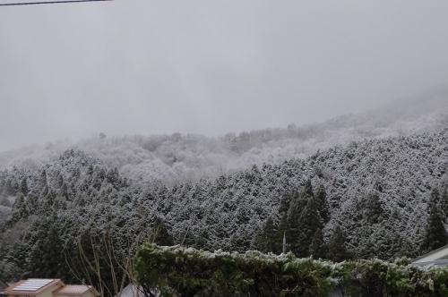 山の雪模様