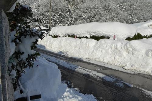 家の前の道路 雪かきする前