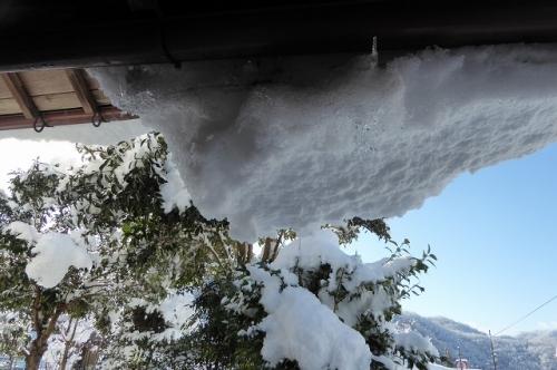 裏口を開けたら 屋根から雪が落ちそうです。