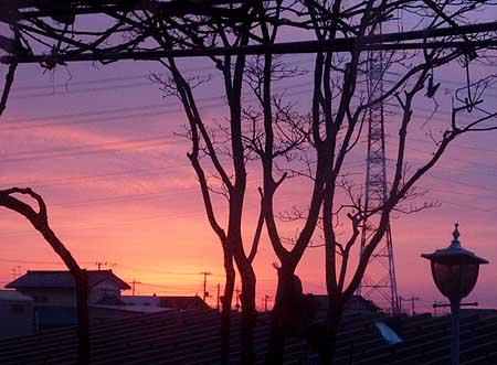 夕焼け見たいな日の出前