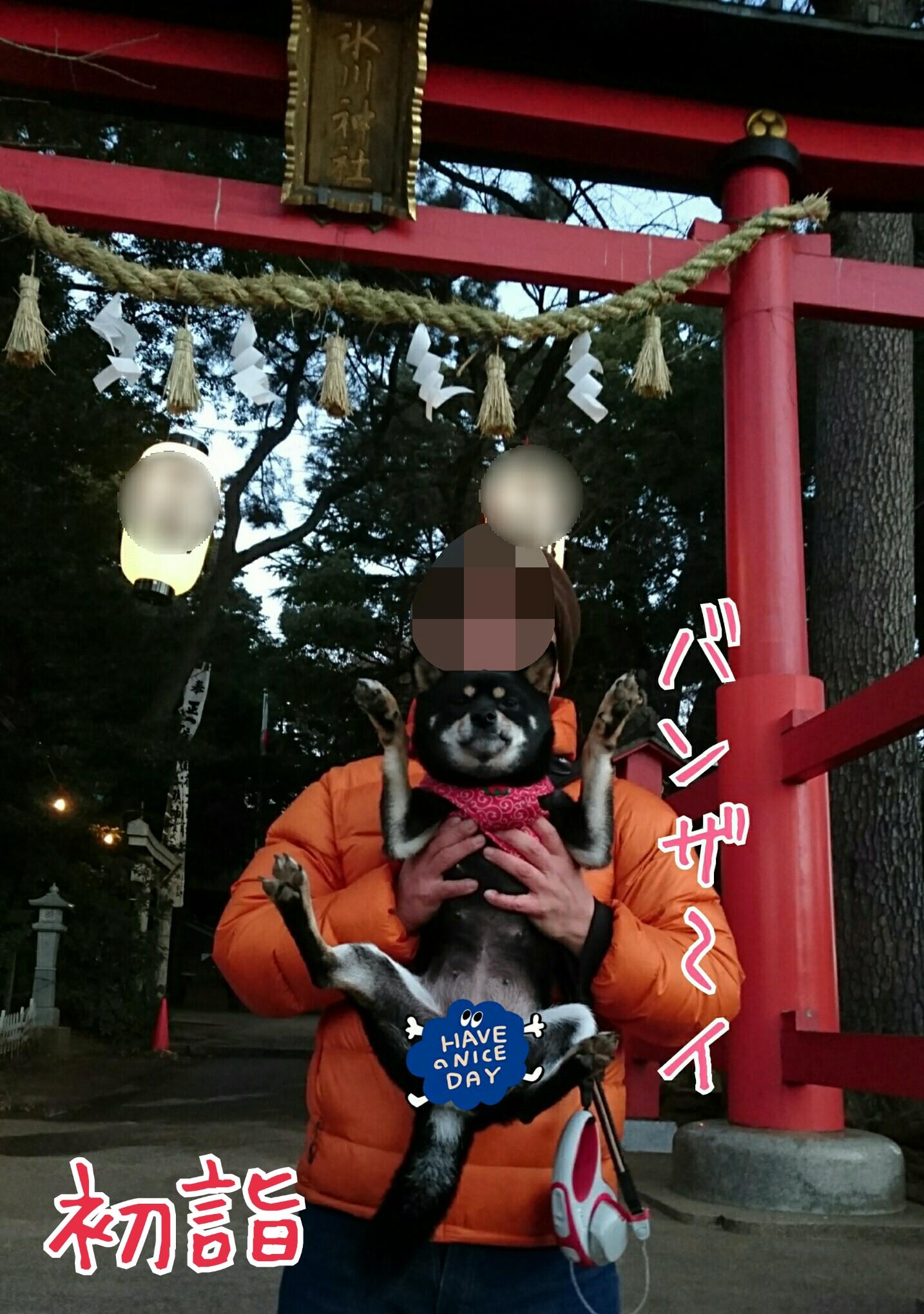 20170102135001a36.jpg