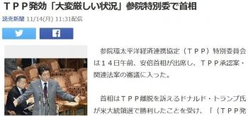 newsTPP発効「大変厳しい状況」参院特別委で首相
