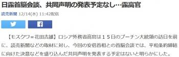 news日露首脳会談、共同声明の発表予定なし…露高官