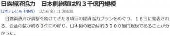 news日露経済協力 日本側総額は約3千億円規模