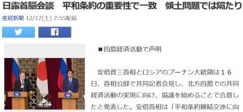 news日露首脳会談 平和条約の重要性で一致 領土問題では隔たり