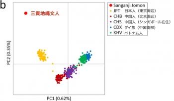 news縄文人は東アジア人と比べ、遺伝的に特異な集団だった!3