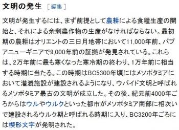 wiki文明
