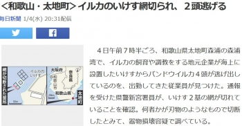 news<和歌山・太地町>イルカのいけす網切られ、2頭逃げる