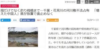news畑だけでなく釣り桟橋まで…千葉・花見川の河川敷不法占有 「増えた中国人」県が放置で歯止めなく