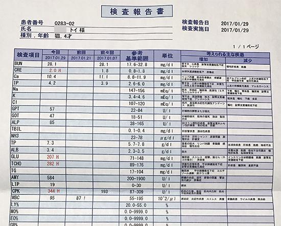blog_000009139.jpg