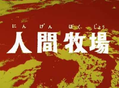 seven_no22_01.jpg