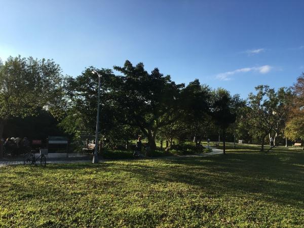 170104-大安森林公園01