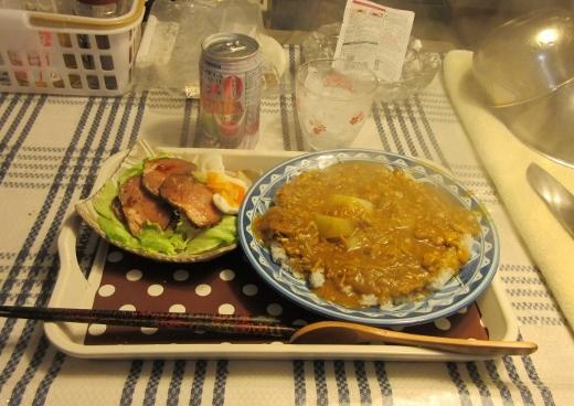 今夜の夕食 (520x368)