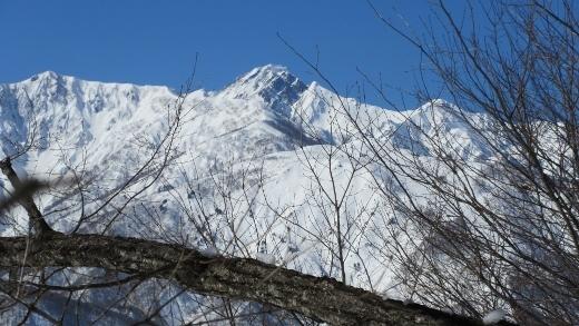 2月4日東山に登る (1) (520x293)