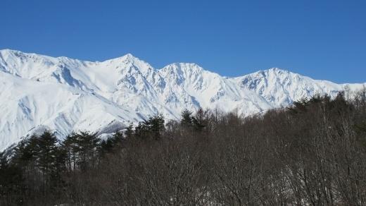 2月4日東山に登る (3) (520x292)