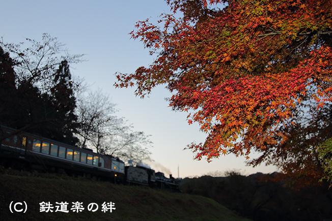 20131109上野尻5D3