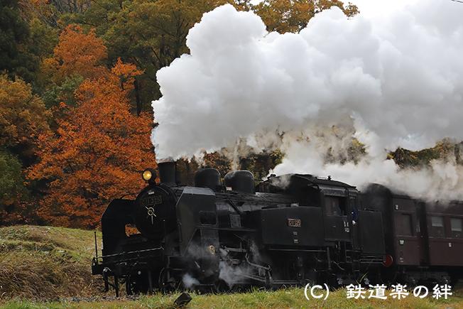 20161109信濃白鳥011DX2
