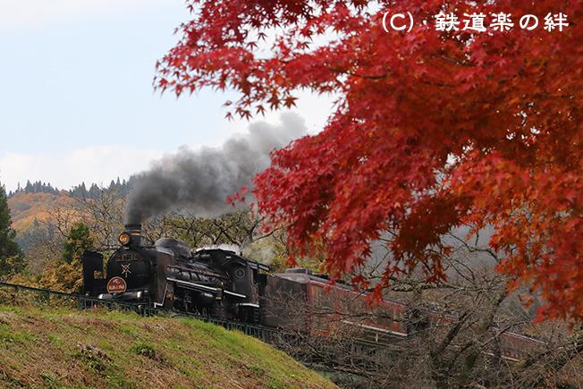 20161112上野尻011DX2