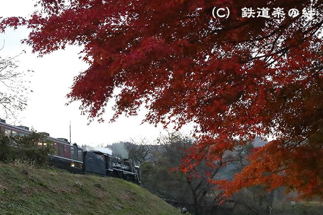 20161112上野尻021DX2