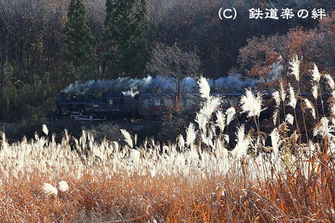 20131207多田羅5D3