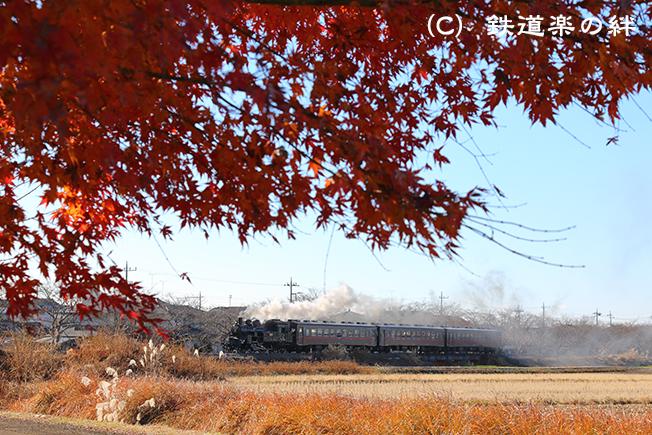 20131207北真岡5D3
