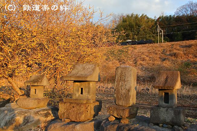 20140111敷島5D3